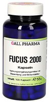 Hecht Pharma Fucus 2000 Kapseln 100 Stk.