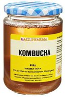 Hecht Pharma Kombucha Teepilz 1 Stk.
