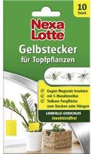 Nexa Lotte Gelbstecker