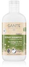 Sante Family Kur Shampoo Bio-Ginko & Olive