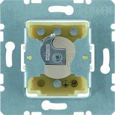 Berker Schlüsseltaster (385620)