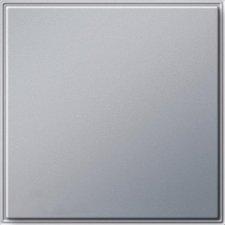 Gira Blindabdeckung mit Tragring (026865)