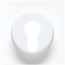 Jung Abdeckung für Schlüsselschalter (AL2928)