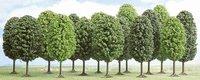 Busch 12 Laubbäume (6486)