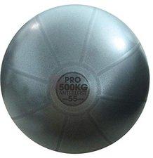 Fitness Mad Anti-Burst Swiss Ball (55cm)