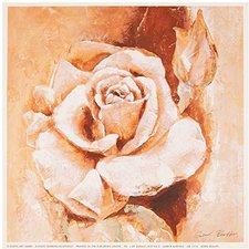 Eurographics Gabor Barthez Born Beauty (18 x 18 cm)