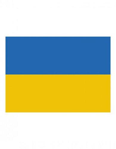 Ukraine Flagge EM 2016