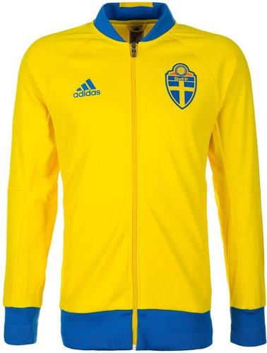 Schweden Jacke EM 2016