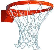 """Sport Thieme Basketballkorb  """"Indoor """" abklappbar ab 105 kg"""