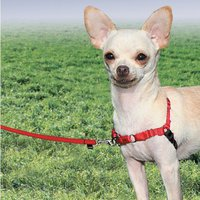 Petsafe Easy Walk Harness (Gr. XL)