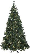 Best Season Weihnachtsbaum Ottawa LED 210 cm (609-01)