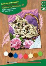 KSG Malen nach Zahlen Masterpiece Kätzchen