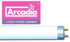 Arcadia Original Tropical T8 (30 W/900 mm)