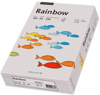 Papyrus Multifunktionspapier Rainbow, A4, 120g/qm, grau (88042810)