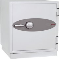 Phoenix Safe Datacare DS2003E