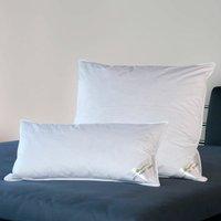 BettwarenShop Comfort Daunenkissen 40x80 cm