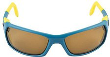 Julbo Bivouak Cameleon (blue yellow/antifog polarized photochromic)