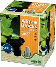 Velda Algae Block 4 Tabletten + Dispenser