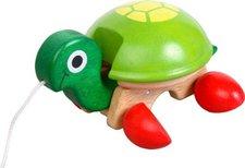 Voila Nachzieh-Schildkröte