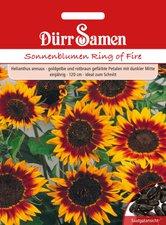 Sonnenblume Ring of Fire (Samen)