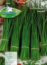 Schnittlauch mehrjährig (Samen)