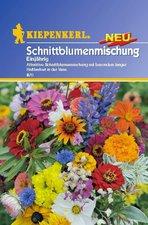 Sommerblumen Mischung (Samen)
