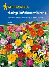 Kiepenkerl Niedriger Duftblumen-Mix (Samen)