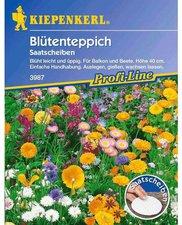 Duft-Blütenteppich (Samen)