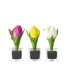 Leonardo Vase mit Tulpe 14 Nido