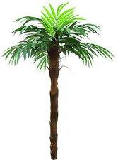 Europalms Phönixpalme mit Palmfaserstamm 260 cm