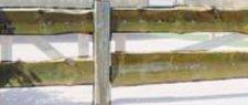 Josef Steiner Bonanza-Zaun Pforte 100 x 100 cm