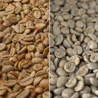 KaffeeShop 24 Rohkaffee Nicaragua (500 g)