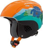 Alpina Eyewear Carat orange