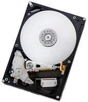Hitachi Deskstar NAS SATA 6TB (H3IKNAS600012872SE/0S03840)