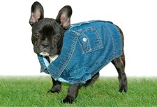 Heim Jeans-Overall Snoopy (46 cm)