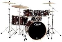 Pacific Drums & Percussion Concept Maple Transparent Walnut Lacquer (CM7)