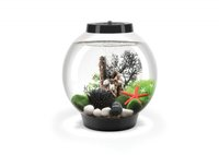 Reef One Baby biOrb Mondlicht (15 L)