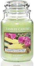 Yankee Candle 2-Docht Tumbler Pineapple Cilantro (623 g)