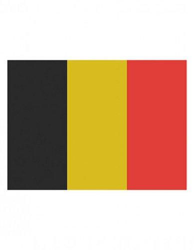 Belgien Flagge EM 2016
