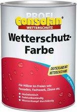 Consolan Profi Wetterschutz-Farbe schwarz 2,5 l