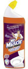 Mr Muscle Toilet Power Aktiv Schmutz-Löser (750 ml)