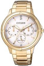 Citizen Elegant (FD2032-55A)