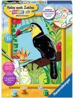 Ravensburger Malen nach Zahlen Schöner Tukan