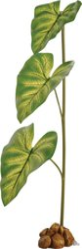 Exo Terra Tropfpflanze groß  (PT2492)