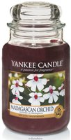 Yankee Candle Madagascan Orchid Big Jar (1344780E)