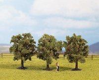 Noch 25113 - Apfelbäume