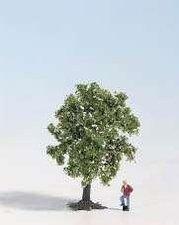 Noch 28511 - Obstbaum weiß blühend