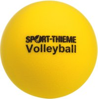 Sport Thieme Softvolleyball
