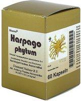 Aalborg-Pharma Harpagophytum Bioxera Kapseln (60 Stk.)