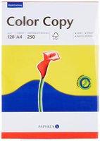 Schneidersöhne Color Copy (31214)